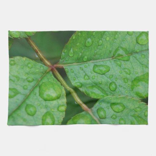 Gotas de lluvia en las hojas frecuencia intermedia toalla