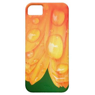 Gotas de lluvia en los pétalos iPhone 5 Case-Mate cobertura