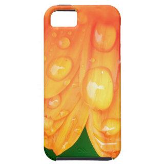 Gotas de lluvia en los pétalos iPhone 5 Case-Mate fundas