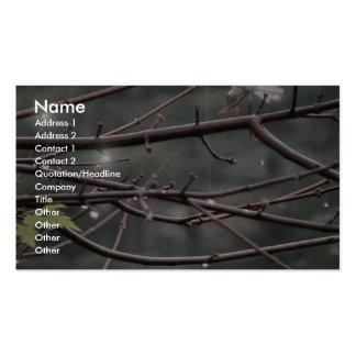 Gotas de lluvia en ramas de árbol de arce tarjetas de visita