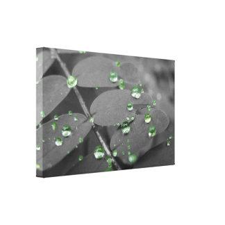 Gotas de lluvia esmeralda impresiones en lona estiradas