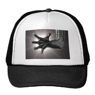 Gotcha! Hat