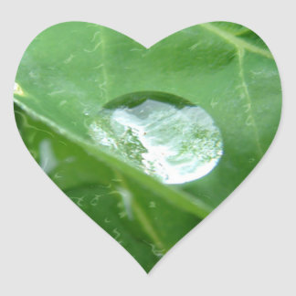 Goteo del agua en diseño de la protección de agua calcomania de corazon