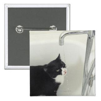 Goteo del agua potable del gato de un golpecito pins