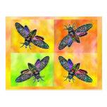Goth Moth 4 postcard