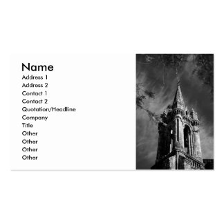 Gothic architecture Double-Sided standard business cards (Pack of 100)