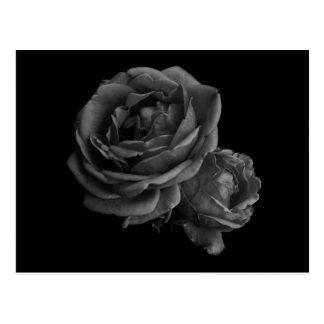Gothic Black Roses Postcard