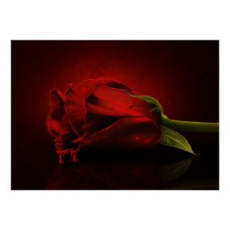 Gothic Bloody Red Rose Poster