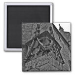 Gothic cathedral court jester close up refrigerator magnets