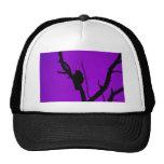 Gothic Crow on Purple Mesh Hat