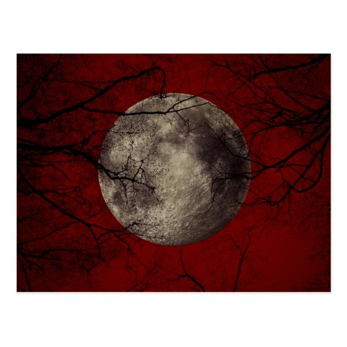 Gothic Full Moon with Haunting Trees Postcard