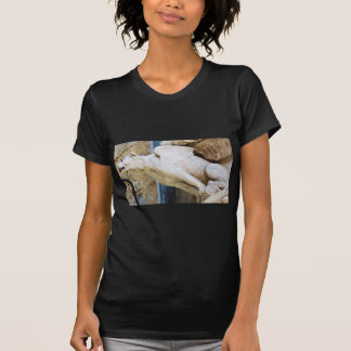 Gothic gargoyle statue - circa 1340 T-Shirt
