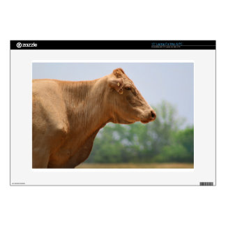 """Gothic Posed Cow 15"""" Laptop Skins"""