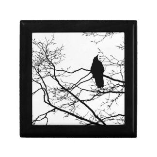 Gothic Raven on a Branch Magic Trinket Box