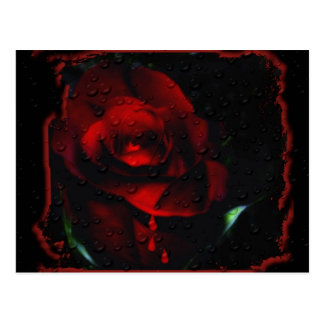 Gothic Red Rose-Bittersweet Postcard
