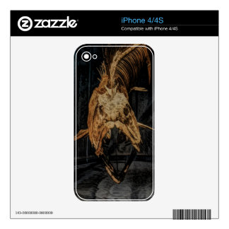 Gothic sea creature skeleton decal for the iPhone 4S