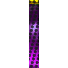 GOTHIC SUN gem purple Ties