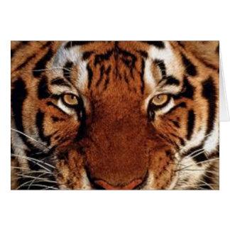 GothicChicz Wild Tiger Card
