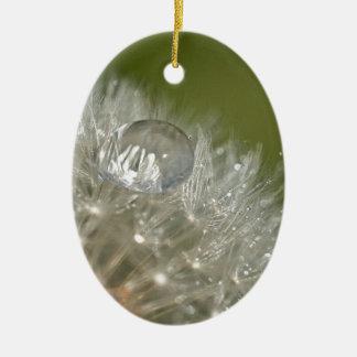 Gotita de agua en un diente de león adorno ovalado de cerámica