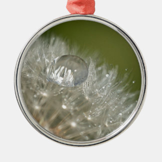 Gotita de agua en un diente de león adorno redondo plateado