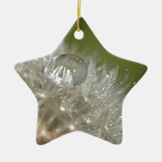 Gotita de agua en un diente de león adorno de cerámica en forma de estrella