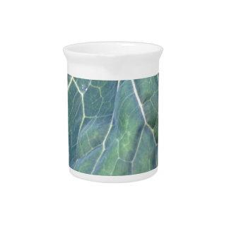 Gotita de agua en una hoja de la col jarrón