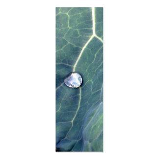 Gotita de agua en una hoja de la col plantillas de tarjetas de visita