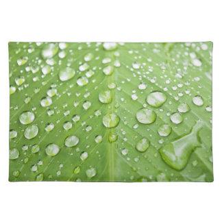 Gotitas de agua en una hoja verde manteles individuales