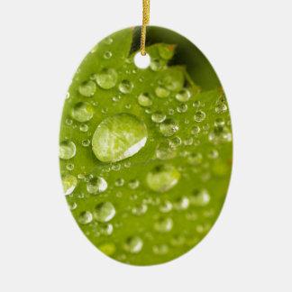 Gotitas de la lluvia en una hoja verde adorno ovalado de cerámica