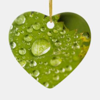 Gotitas de la lluvia en una hoja verde adorno de cerámica en forma de corazón