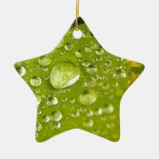 Gotitas de la lluvia en una hoja verde adorno de cerámica en forma de estrella