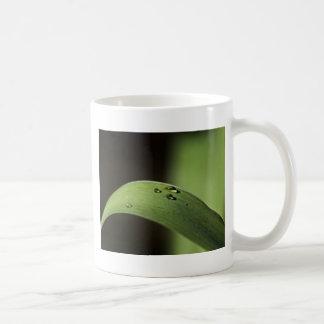 Gotitas en una hoja taza clásica