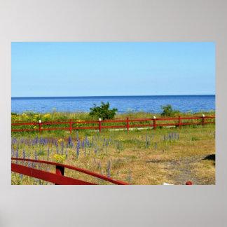 Gotland Island Sweden Landscape Baltic Sea Flowers Poster