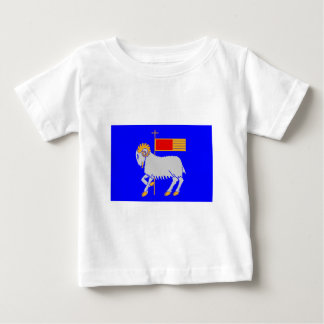 Gotlands län flag tee shirts