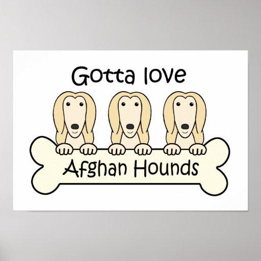 Gotta Love Afghan Hounds Poster