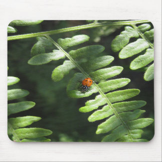 Gotta Love Ladybugs (1) Mousepad