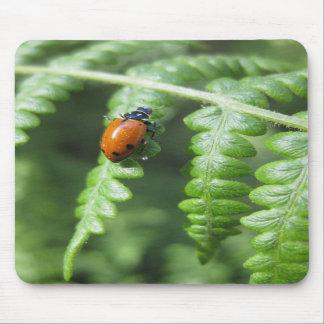 Gotta Love Ladybugs (2) Mousepad