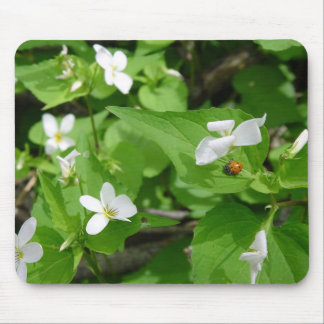 Gotta Love Ladybugs (3) Mousepad