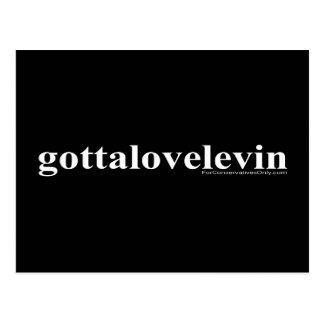 Gotta Love Levin Postcard
