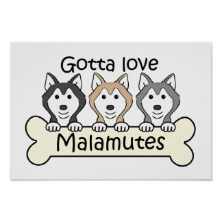 Gotta Love Malamutes Poster