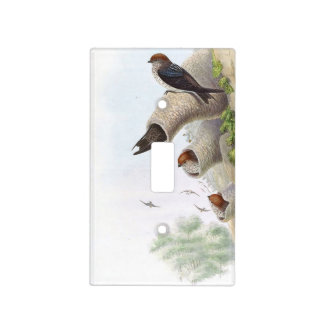 Gould Cliff Swallow Birds Light Switch Cover