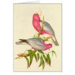 Gould - Cockatoo del Rosa-Breasted Tarjeta De Felicitación