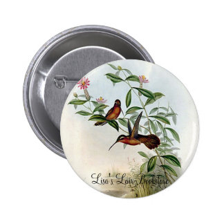 Gould - Dohrn s Hermit Hummingbird Pinback Buttons