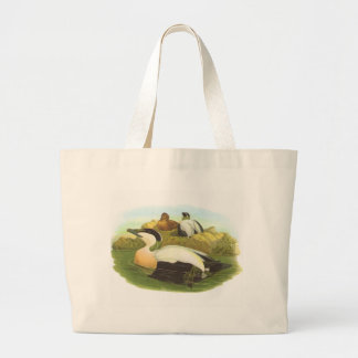 Gould - Eider - Somateria mollisima Bag
