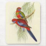 Gould - el Parakeet del banderín Alfombrillas De Ratones