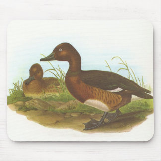 Gould - Ferruginous Duck - Aythya nyroca Mouse Pad