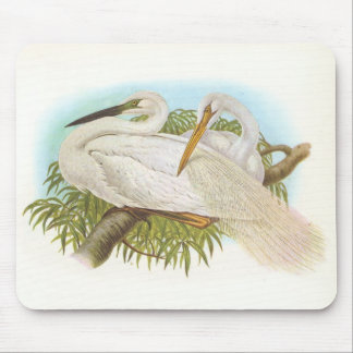 Gould - Great White Heron - Egretta alba Mouse Pad