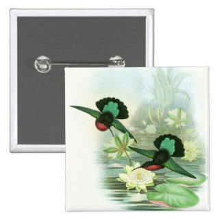 Gould Hummingbirds Waterlilies Square Button Pin