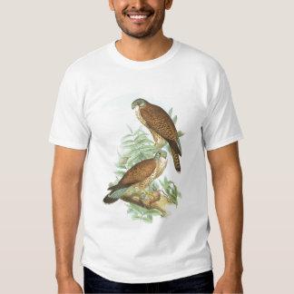 Gould - Kestrel - Falco tinnunculus T-Shirt