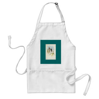 Gould - Middle-Sized Hermit Hummingbird Adult Apron
